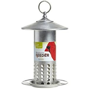 Photo of mealworm bird feeders in metal with holes throughout it.