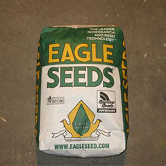 Eagle Seeds Big Fellow RR