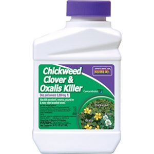 chickweed clover oxalis killer in large bottle