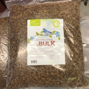 Bulk bag of dried mealworms.