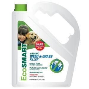 eco smart organic weed grass killer in white bottle