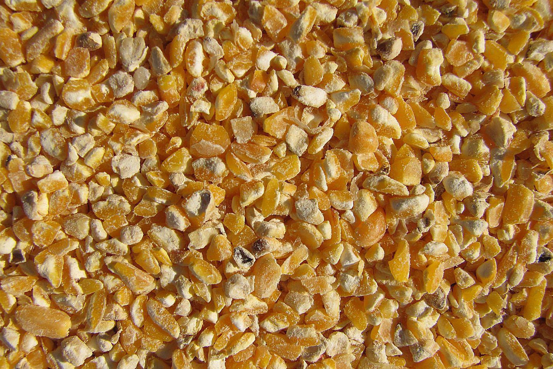 closeup of coarse cracked corn