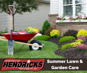 Summer Lawn and Garden Care